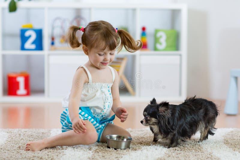 喂养逗人喜爱的狗的可爱的小女孩 免版税库存照片
