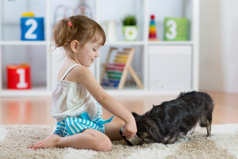 喂养逗人喜爱的狗的可爱的小孩女孩 库存照片