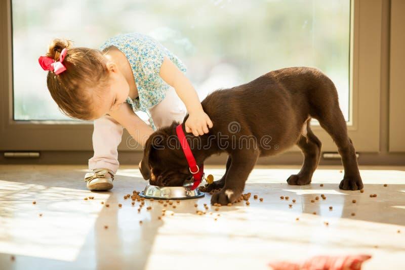 喂养她的小狗的逗人喜爱的小女孩 免版税图库摄影