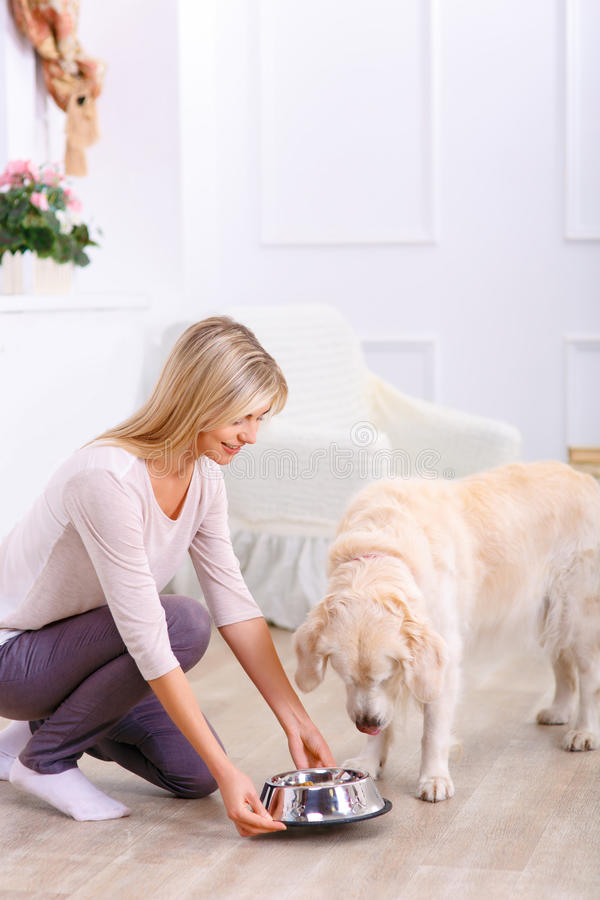喂养狗的有同情心的妇女 库存照片