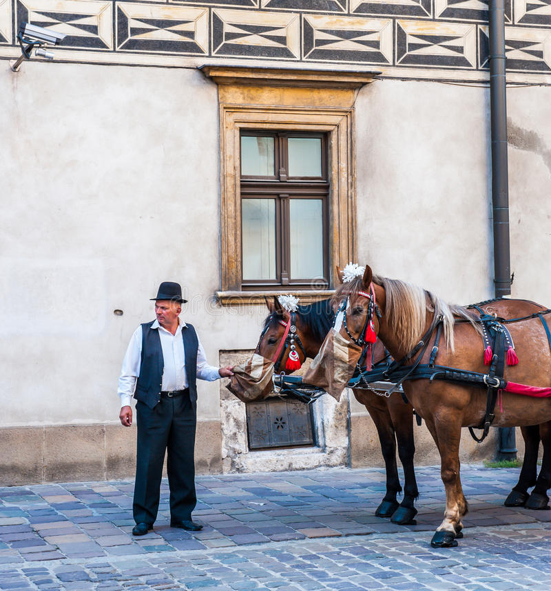 出租车司机在克拉科夫 库存图片
