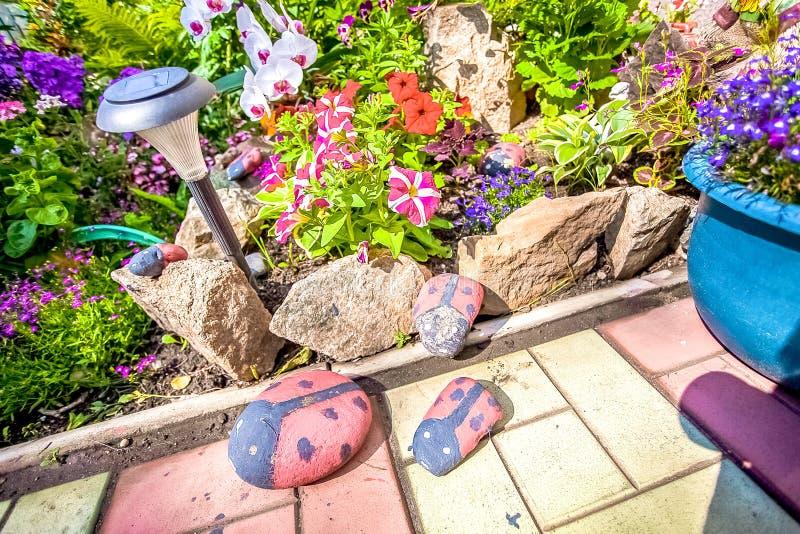 喇叭花在夏天庭院里  库存图片
