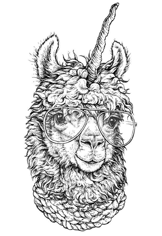 喇嘛/llamacorn在镜片,行家样式图画,隔绝在白色 为广告,网页设计,海报, banne反对 皇族释放例证