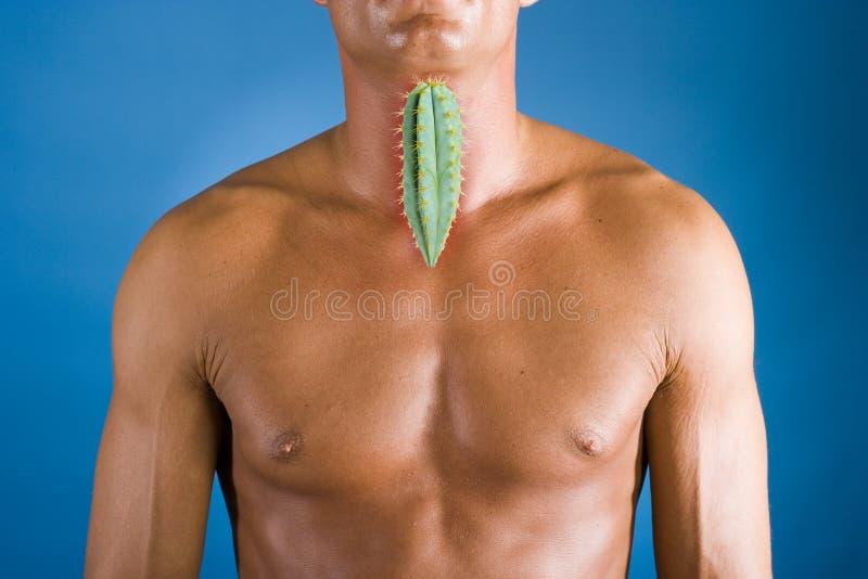 喉咙痛 库存照片