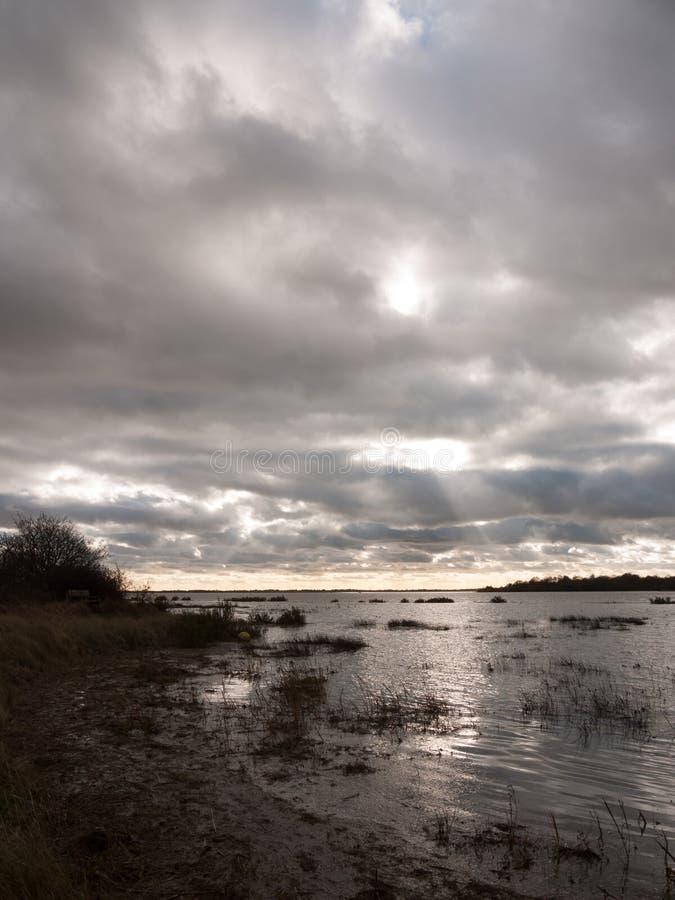 喜怒无常的天空阴云密布秋天冬天海湾水海洋树 库存图片