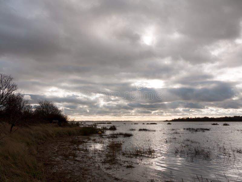 喜怒无常的天空阴云密布秋天冬天海湾水海洋树 库存照片