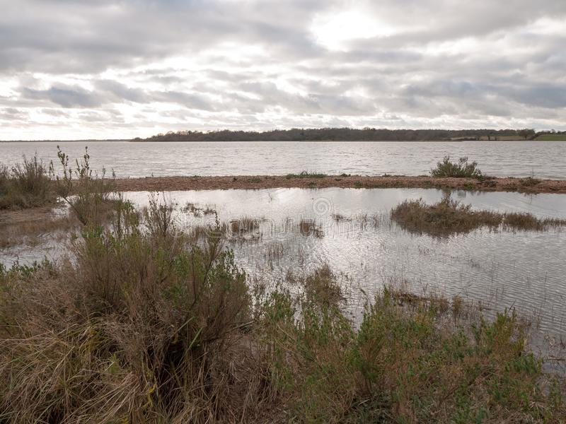 喜怒无常的天空阴云密布秋天冬天海湾水海洋树 免版税库存图片