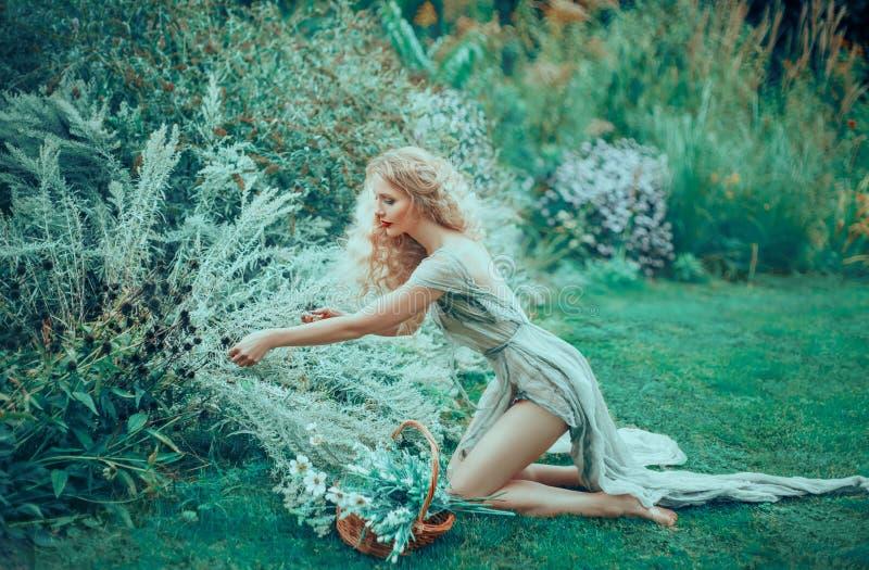 喜欢庭院的新生村姑,收集在一个篮子的花束用医药草本 年轻愈疗者 库存图片