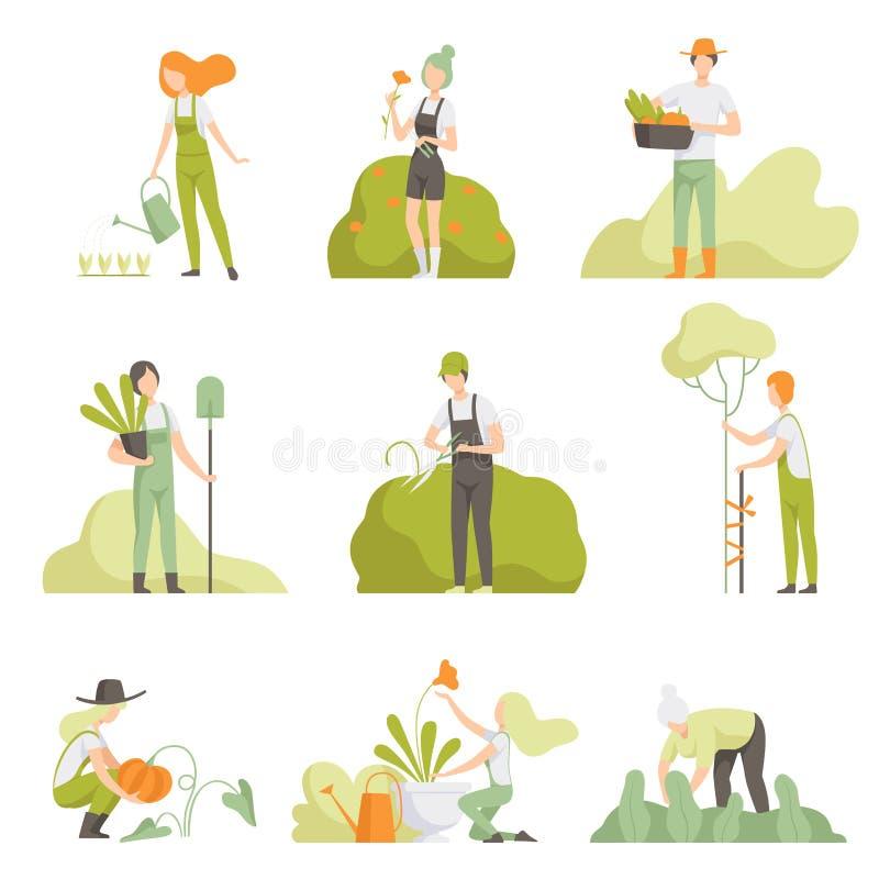 喜欢庭院集合、男人和妇女的,水厂,增长的农产品传染媒介植物的人们 皇族释放例证