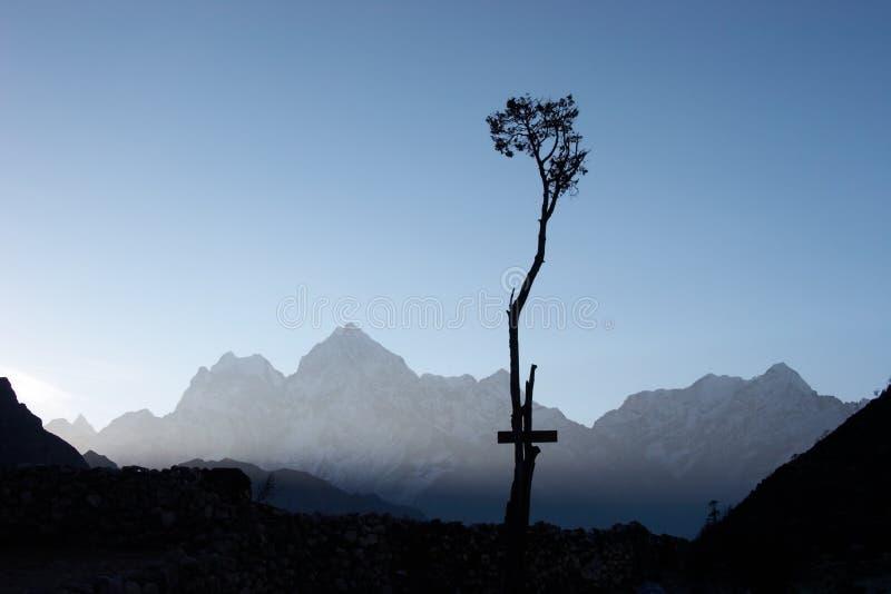 喜马拉雅山孤立尼泊尔结构树 免版税图库摄影