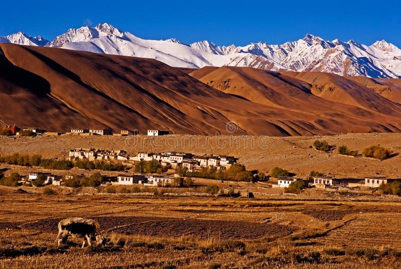 喜马拉雅山的山麓小丘的村庄 免版税库存照片
