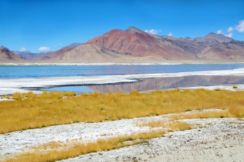 喜马拉雅山盐湖 库存图片