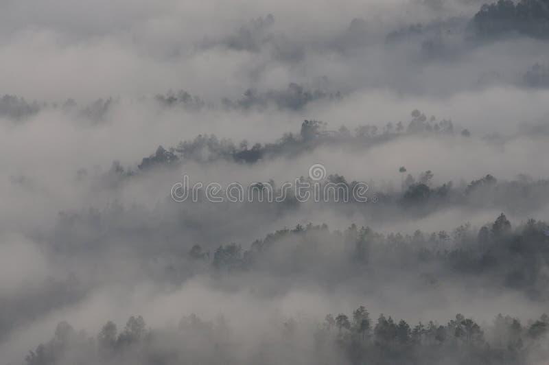 喜马拉雅范围如在Kausani,印度的早晨中看到 免版税库存照片