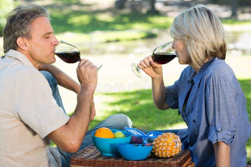 喝红葡萄酒的夫妇在公园 图库摄影