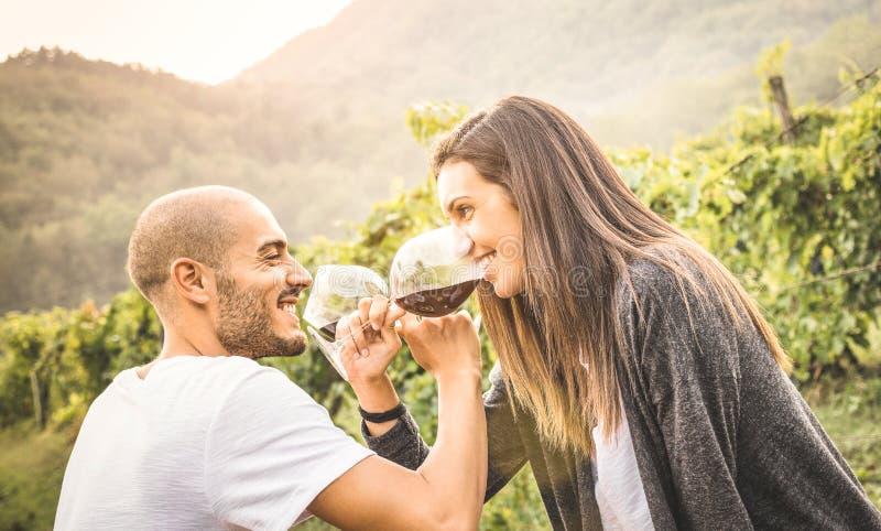 喝红葡萄酒的恋人愉快的年轻夫妇在葡萄园 免版税库存图片