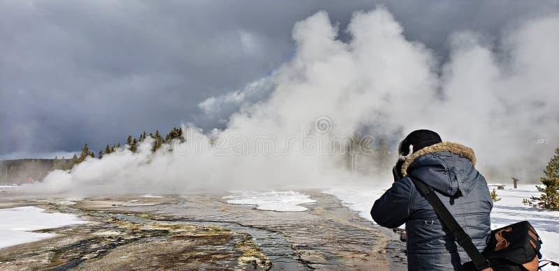 喷发在冬天的雏菊喷泉 库存照片