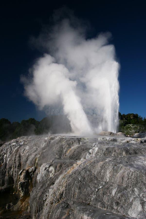 喷发在罗托路亚,新西兰的喷泉 免版税库存图片