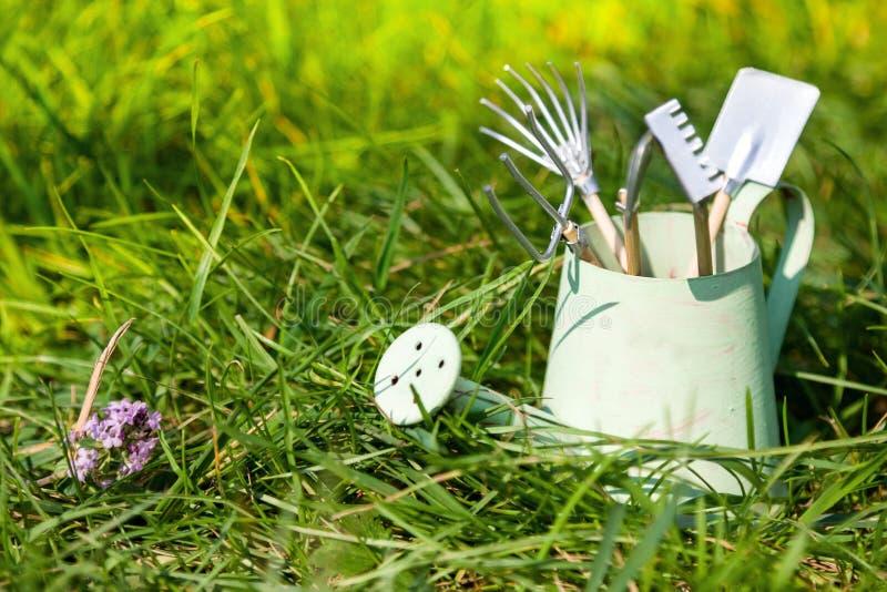 喷壶和园艺工具在草在夏天 免版税库存照片
