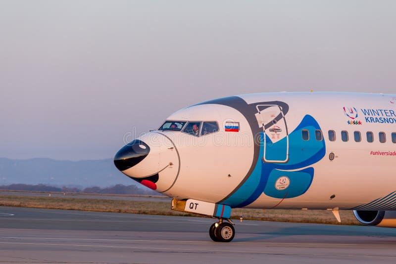喷气式客机飞机NordStar航空公司波音737-800头在跑道的 机体被绘当狗西伯利亚爱斯基摩人 库存图片