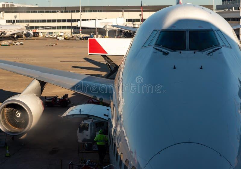 喷气机在悉尼机场靠了码头,有一人装载的好在飞机 库存照片