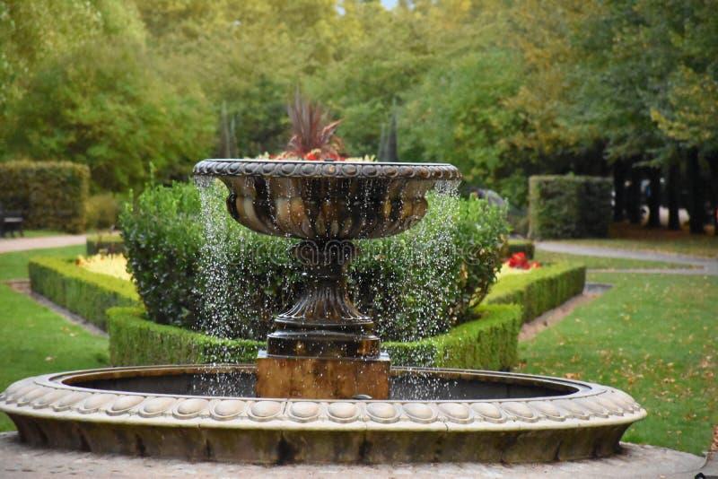 喷泉公园开花秋天庭院 库存照片