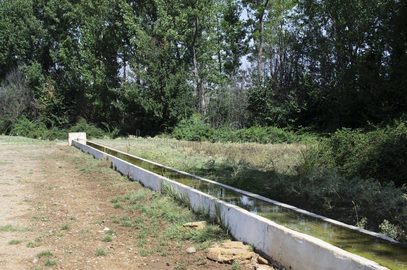喷泉和水低谷 免版税库存照片