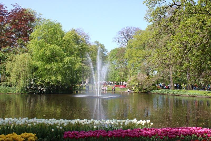 喷泉在库肯霍夫庭院的湖,荷兰 免版税库存照片