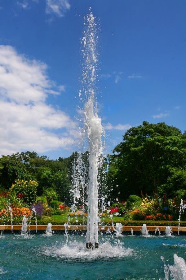 喷泉庭院 库存图片
