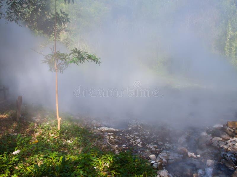 Download 从喷泉温泉的薄雾在槐Nam党国家公园我 库存照片. 图片 包括有 夏天, 横向, 颜色, 自然, 和平, beauvoir - 30329588