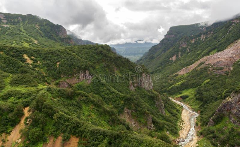 喷泉谷的河Geysernaya  克罗诺基火山在堪察加半岛的自然保护 免版税图库摄影