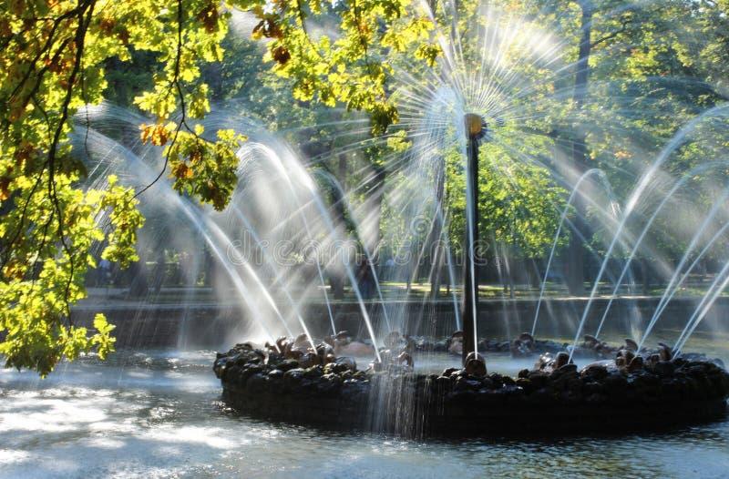 喷泉,喷泉在Petrodvorets,太阳的喷泉,水,喷泉喷气机在秋天公园 免版税库存照片