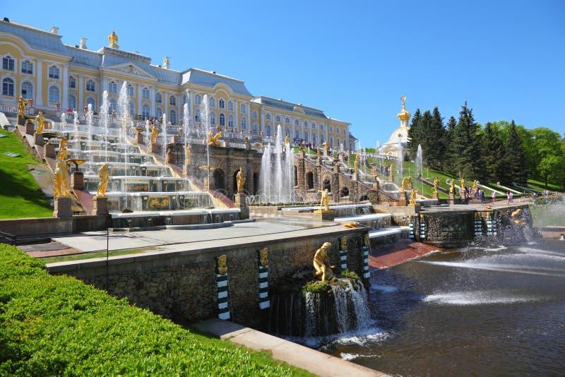 喷泉petergof彼得斯堡圣徒 免版税库存图片
