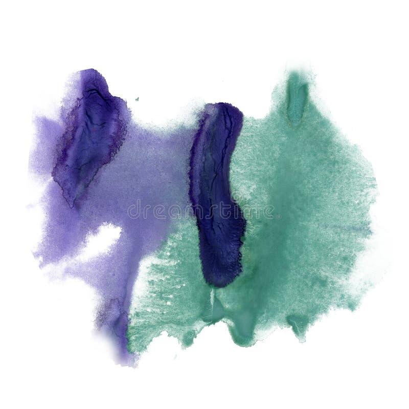 喷溅在白色背景隔绝的墨水水彩绿色紫色染料液体水彩宏观斑点污点纹理 库存例证