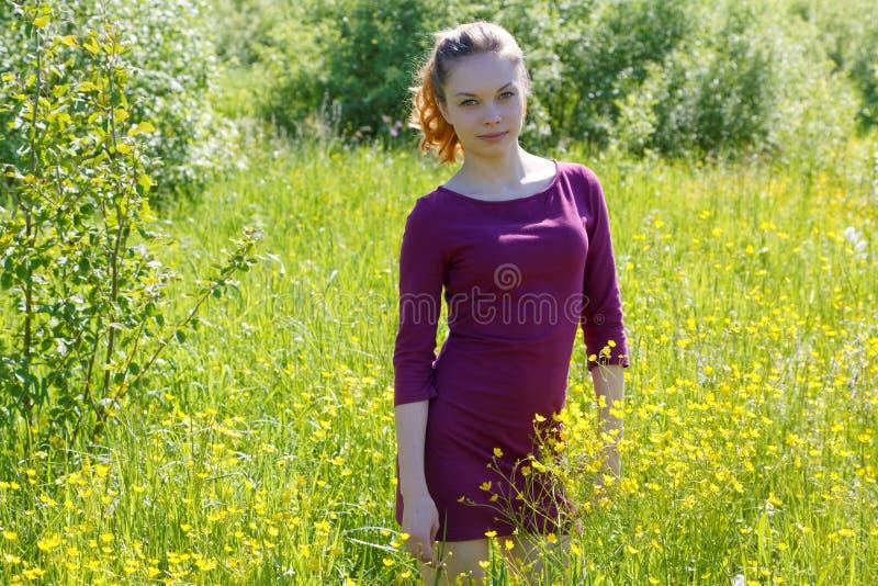 嗅一朵草甸花的女孩在一个夏天 图库摄影