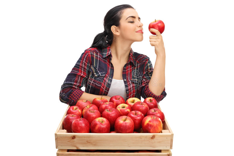 嗅到在条板箱后的女性农夫一个苹果用苹果填装了 库存照片