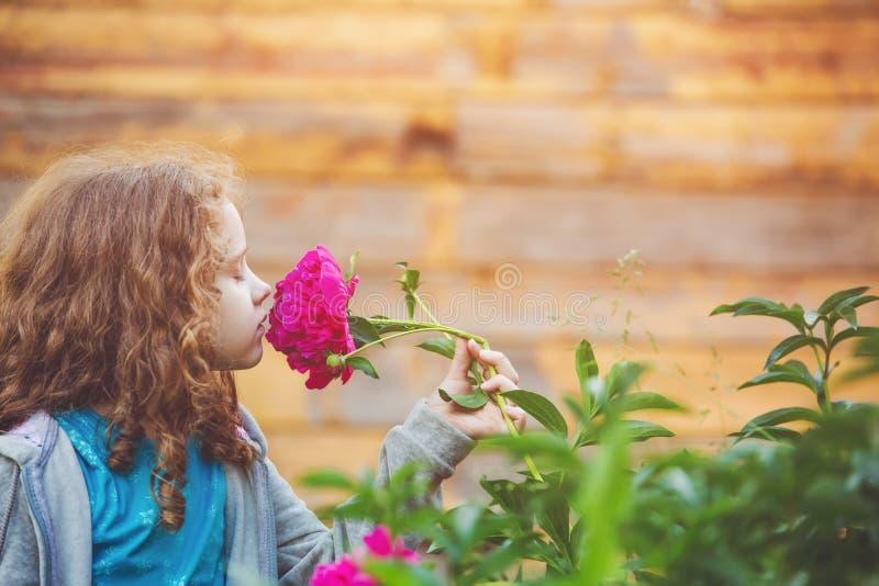 嗅到雏菊的花束女孩,在外形的照片 免版税库存照片