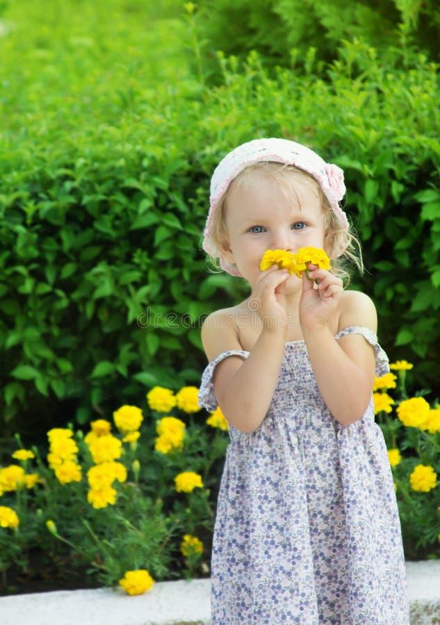 嗅黄色花的可爱的女孩 免版税库存照片