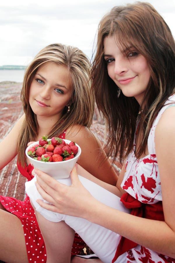 嗡嗡声草莓 库存照片