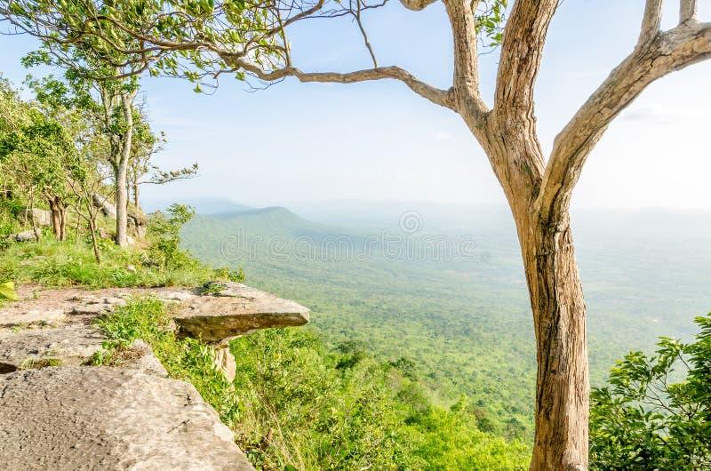 嗡嗡声-煤斗峭壁,泰国 免版税库存图片