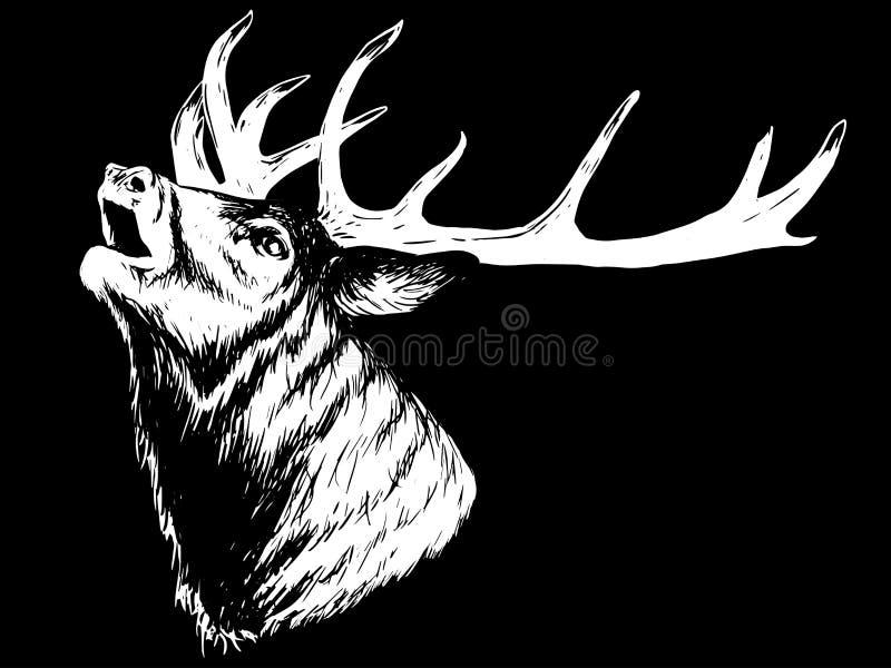 嗥叫有角的鹿 库存例证