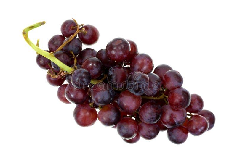 嘎吱咬嚼的红葡萄顶视图 免版税库存图片