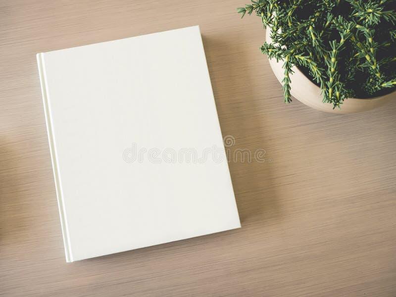 嘲笑在木桌上的书套与绿色植物 库存图片