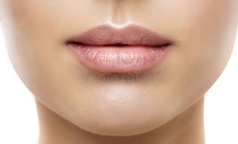 嘴唇秀丽特写镜头,妇女自然面孔组成,桃红色唇膏 免版税库存照片