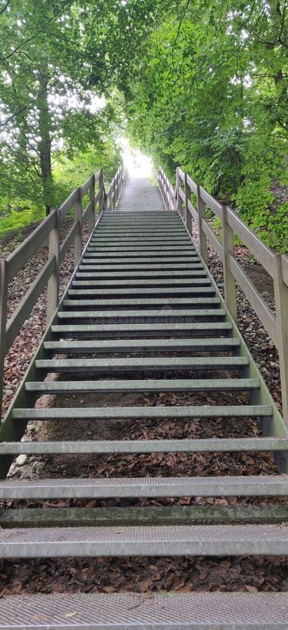 噢不!-那个楼梯是太陡峭和长的! 免版税库存图片
