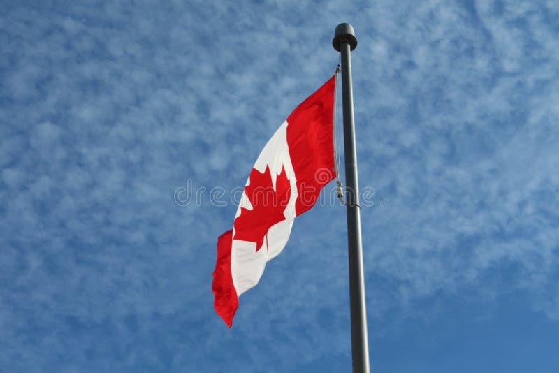 噢加拿大! 库存照片