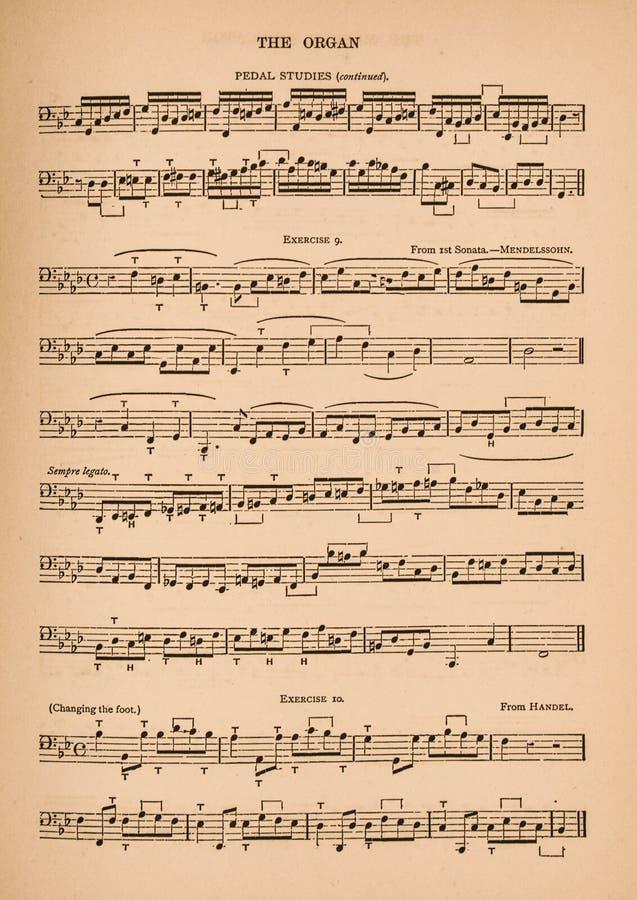器官的活页乐谱 向量例证