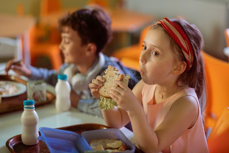 嚼她的三明治的深色头发的女小学生,当吃午餐时 图库摄影