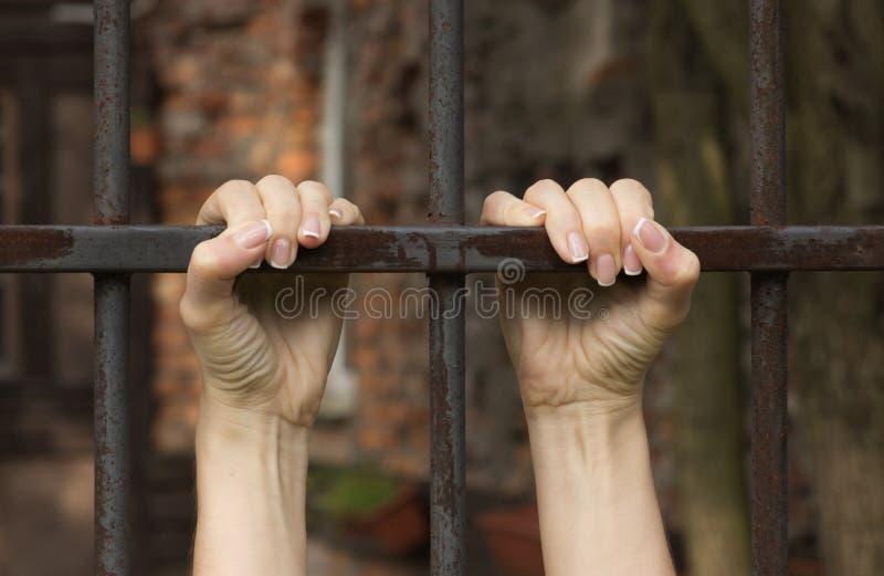 囚犯的手钢格子特写镜头的 免版税库存照片