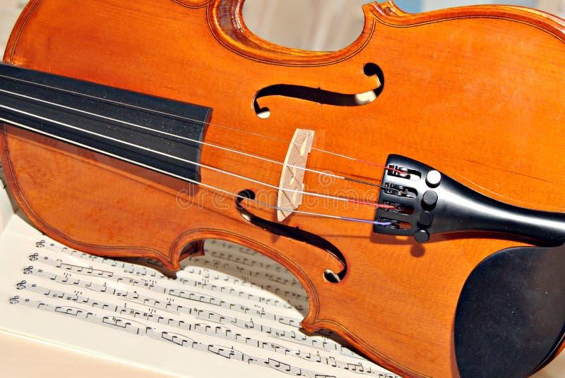 四个字符串小提琴 库存照片