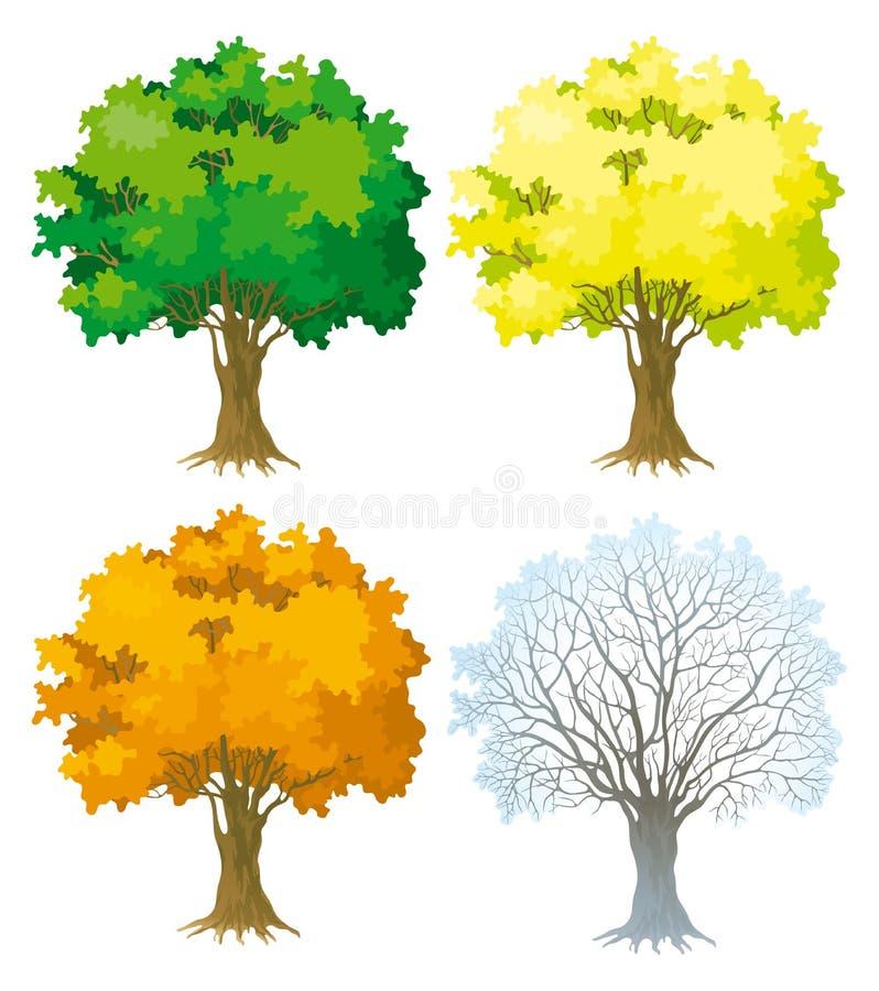 Download 四个季节结构树 向量例证. 插画 包括有 查出, 孤零零, 玻色子, 吟呦诗人, 孤独, 本质, 橡木, 绿色 - 22354861